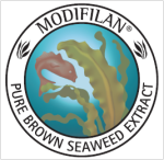 Modifilan Seaweed